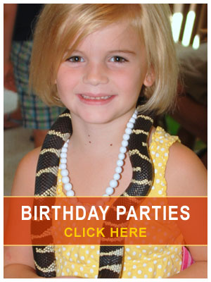 Houston Reptile Birthday Parties For Boys And Girls